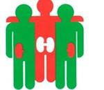 Asociación para la lucha contra las enfermedades renales, ALCER