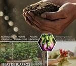 Horticultura y producción ecológica