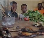 Cine para África. Imágenes para emocionar