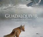 """Cine Ambiental """"Guadalquivir"""""""