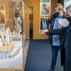 Catedral eterna. Así la vieron, así la ven en Museo de la Evolución Humana (MEH), Burgos