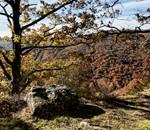 Excursión Ambiental: Monte Hijedo, Con Enrique del Rivero.
