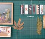 """Taller: """"Iniciación al prensado botánico"""". 2131norte."""