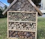 Taller Ambiental: Hotel para insectos