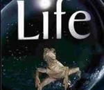 "Cine ambiental: ""Life"""